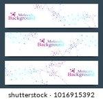 modern set of vector banners.... | Shutterstock .eps vector #1016915392