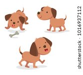 set of dog in different pose.... | Shutterstock .eps vector #1016937112
