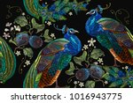 embroidery peacocks tropical... | Shutterstock .eps vector #1016943775