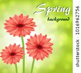abstract spring background with ... | Shutterstock .eps vector #1016962756