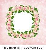 beautiful pink rose flowers in... | Shutterstock . vector #1017008506