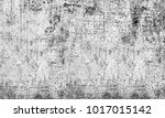 texture black and white... | Shutterstock . vector #1017015142