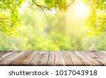 empty wooden table with garden... | Shutterstock . vector #1017043918