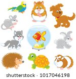 set of pets including a cat  a... | Shutterstock .eps vector #1017046198