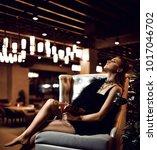 beautiful sexy fashion brunette ... | Shutterstock . vector #1017046702