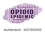 opioid crisis word cloud... | Shutterstock .eps vector #1017052432