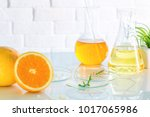 health and beauty background...   Shutterstock . vector #1017065986