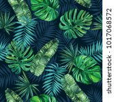 palm leaves on a blue... | Shutterstock . vector #1017068572