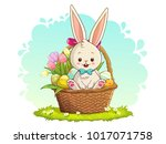 cute rabbit sitting in basket... | Shutterstock .eps vector #1017071758