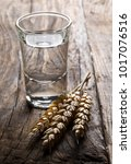 german hard liquor korn... | Shutterstock . vector #1017076516