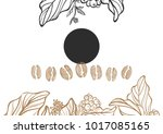 realistic set of coffee bean... | Shutterstock . vector #1017085165