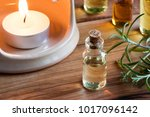 a bottle of rosemary essential...   Shutterstock . vector #1017096142