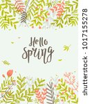 hello spring   greeting card... | Shutterstock .eps vector #1017155278