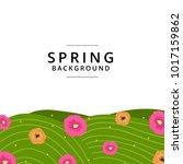 spring summer background... | Shutterstock .eps vector #1017159862
