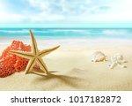 the view on sandy beach. | Shutterstock . vector #1017182872