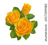 Composition With Yellow Roses....