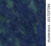 grunge green background with...   Shutterstock . vector #1017237286