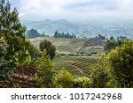 green farmland fields landscape ...   Shutterstock . vector #1017242968