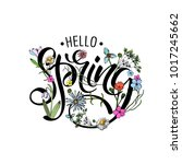 lettering of brush hello spring ...   Shutterstock .eps vector #1017245662