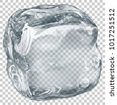 one big realistic translucent... | Shutterstock .eps vector #1017251512