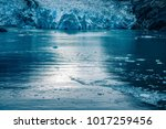 sawyer glacier at tracy arm... | Shutterstock . vector #1017259456