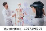 doctor uses augmented reality... | Shutterstock . vector #1017295306