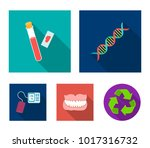 dna code  blood test in vitro ... | Shutterstock .eps vector #1017316732