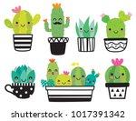 cute succulent or cactus plant...