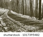 copy of old lithographic... | Shutterstock . vector #1017395482