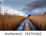 boardwalk path through wetlands ...   Shutterstock . vector #101741062