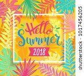 hello summer 2018 handdrawn... | Shutterstock .eps vector #1017456205