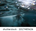 Small photo of Split surface photo after jump into sea handsome young adventuristic man with a lot of bubbles around him.