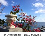 pink flowers on sea background | Shutterstock . vector #1017500266