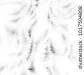 abstract grunge grid polka dot... | Shutterstock .eps vector #1017504808