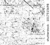 chaotic grunge ink particles.... | Shutterstock . vector #1017515698