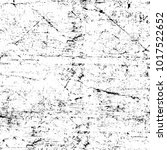 chaotic grunge ink particles.... | Shutterstock . vector #1017522652