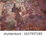 background of rusty metal ... | Shutterstock . vector #1017557185