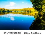 beautiful lake tropical forest... | Shutterstock . vector #1017563632