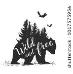 silhouette of a wild bear  fir... | Shutterstock .eps vector #1017575956