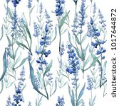 wildflower lavender flower...   Shutterstock . vector #1017644872