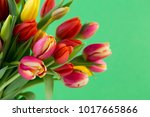 a colorful spring greetings...   Shutterstock . vector #1017665866