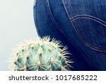 men's ass sits down on a cactus....   Shutterstock . vector #1017685222