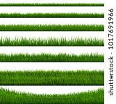 grass border collection white... | Shutterstock .eps vector #1017691966