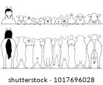 standing farm animals front and ... | Shutterstock .eps vector #1017696028