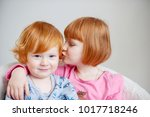 red haired brother and sister... | Shutterstock . vector #1017718246