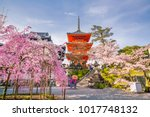 kiyomizu dera temple and cherry ... | Shutterstock . vector #1017748132
