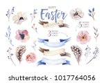 watercolor set with flowers ... | Shutterstock . vector #1017764056