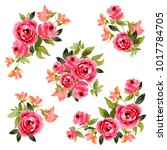 isolated floral elements on... | Shutterstock .eps vector #1017784705
