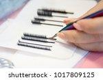 volumetric eyelash extends in... | Shutterstock . vector #1017809125