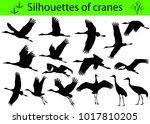 Stock vector collection of silhouettes of cranes 1017810205